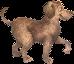 Dogopoly mascot